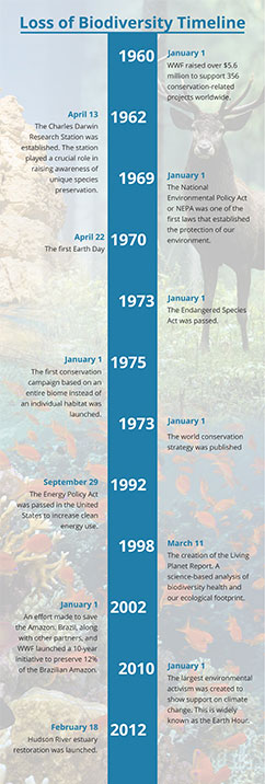 Loss of biodiversity timeline